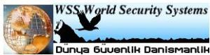 world security systems